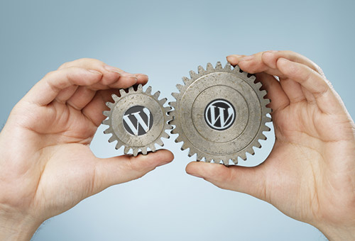 Difference Between A Custom And Premium WordPress Theme