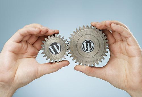 Custom WordPress themes