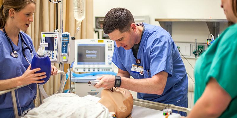 Master of Science in Nursing (MSN)