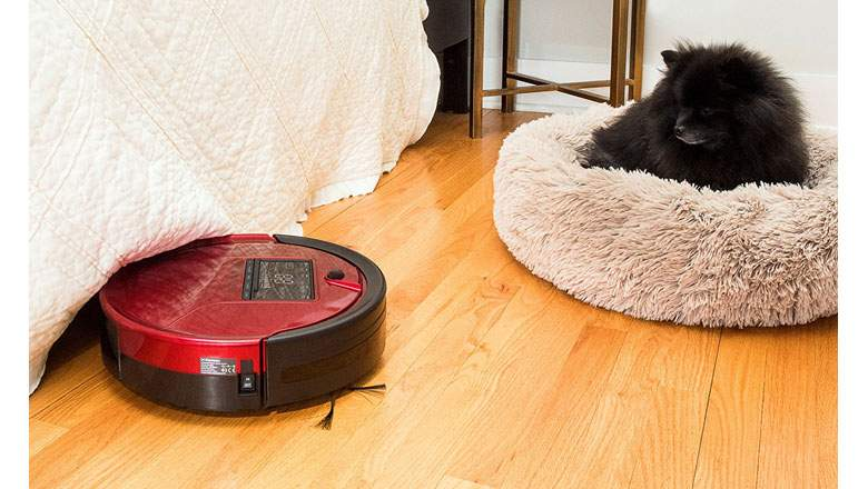 Best Vacuum Cleaner For Pet Hair On Carpet