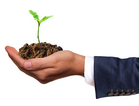 How Reinvesting Profits Can Help Your Company To Grow