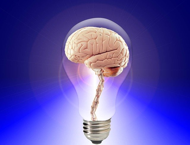 Encouraging Your Brain To Absorb Information Easier