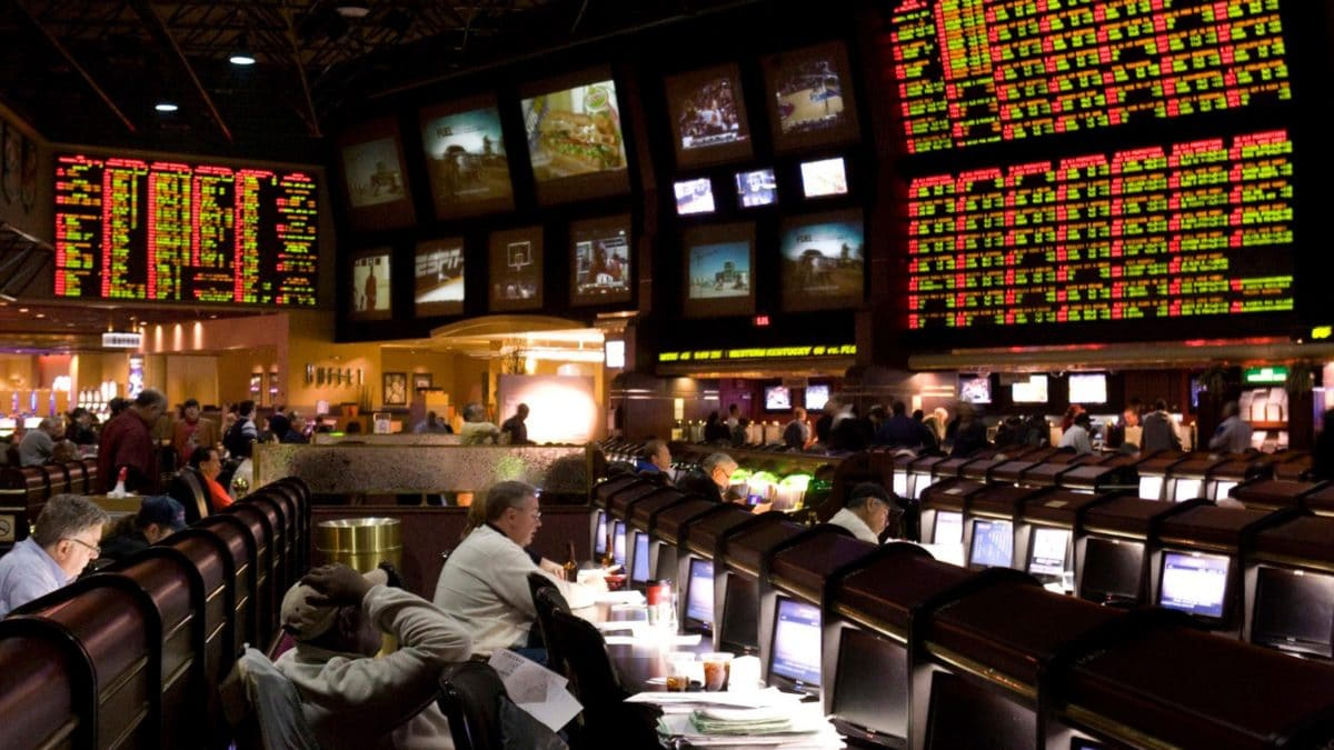 Beginners Guide To Successful Sports Betting