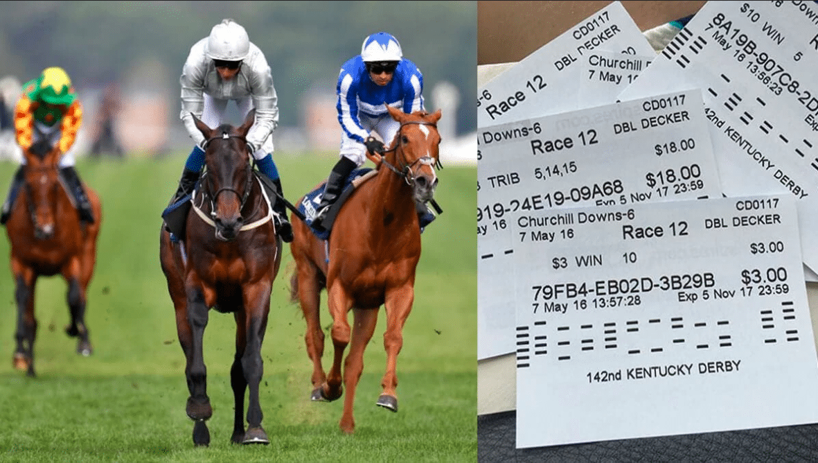 How to Choose a Winning Bet in Horse Racing?