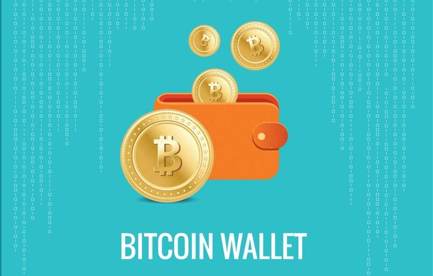 A Complete Guide To Choose The Most Suitable Bitcoin Wallet!