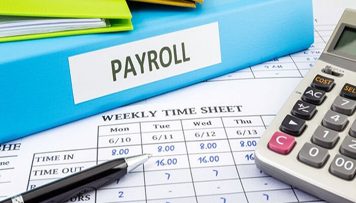 7 Need-to-Know Elements of Payroll Processing for Startup Founders