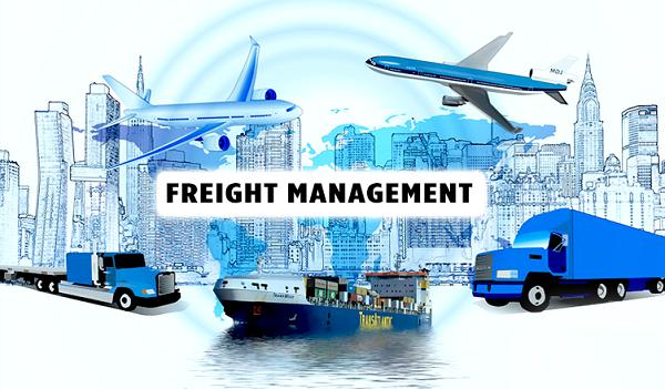 5 Tips for Selecting the Best Freight Management Software